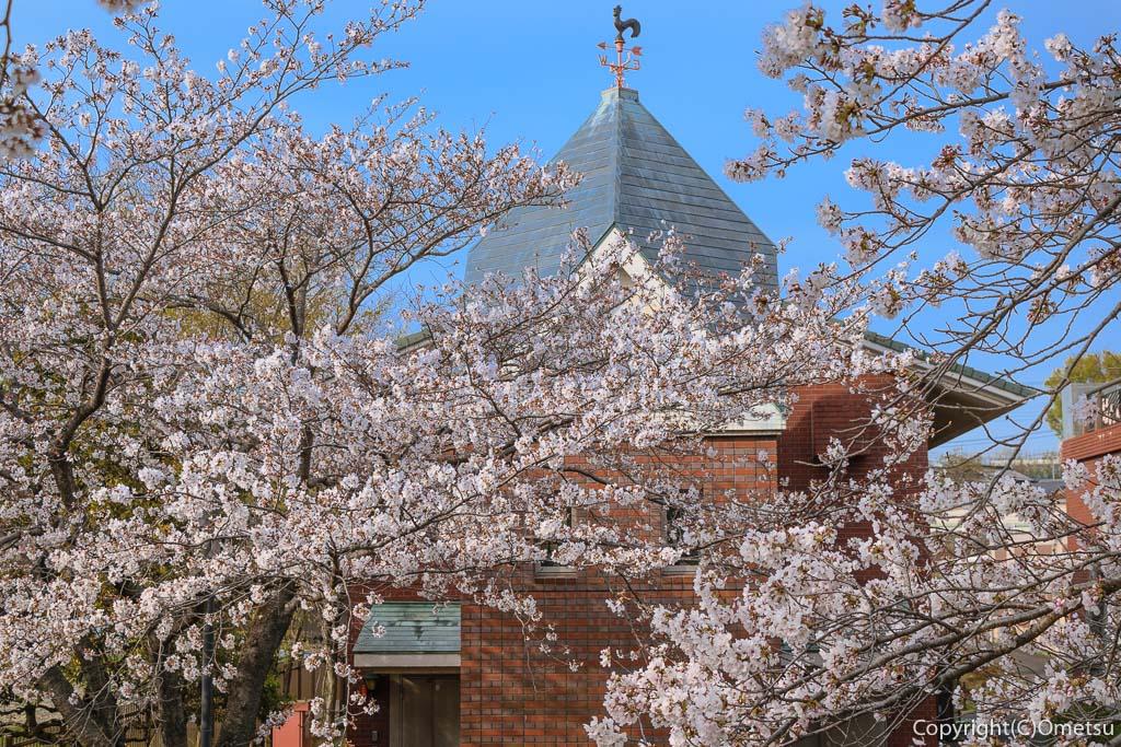 羽村市・浄水場と桜
