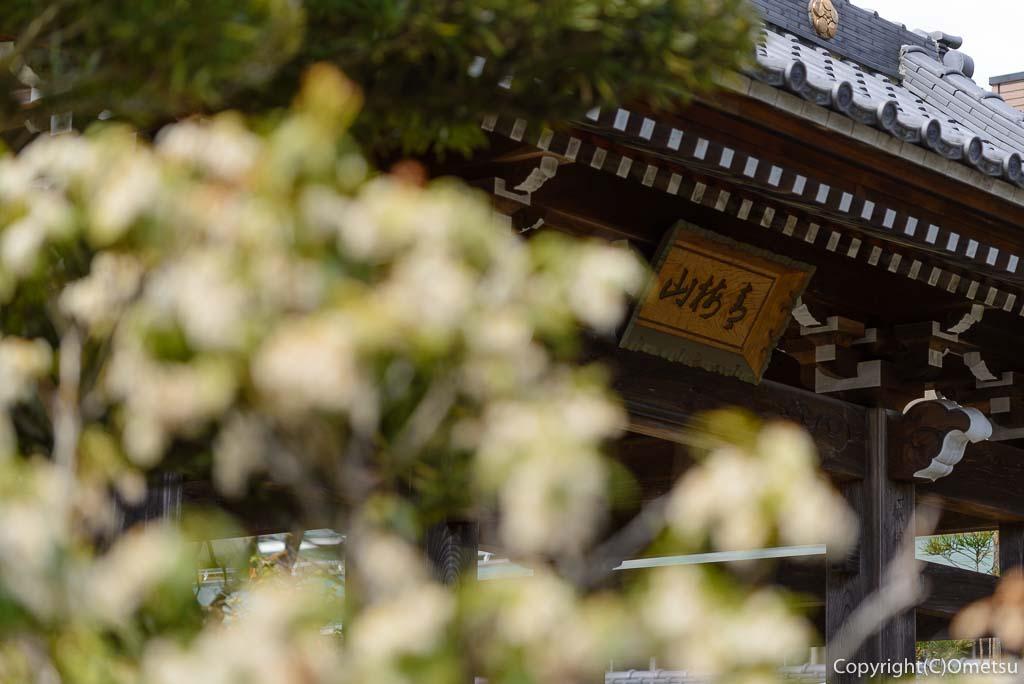 青梅・天ヶ瀬の金剛寺・山門