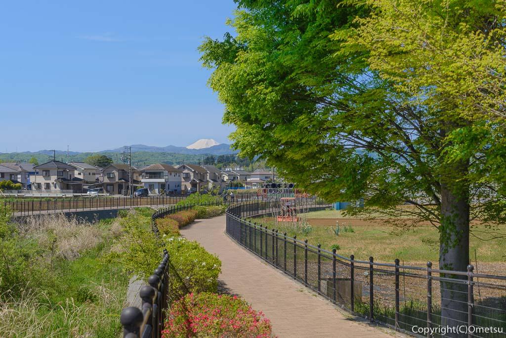 青梅市・霞川遊歩道からの富士山