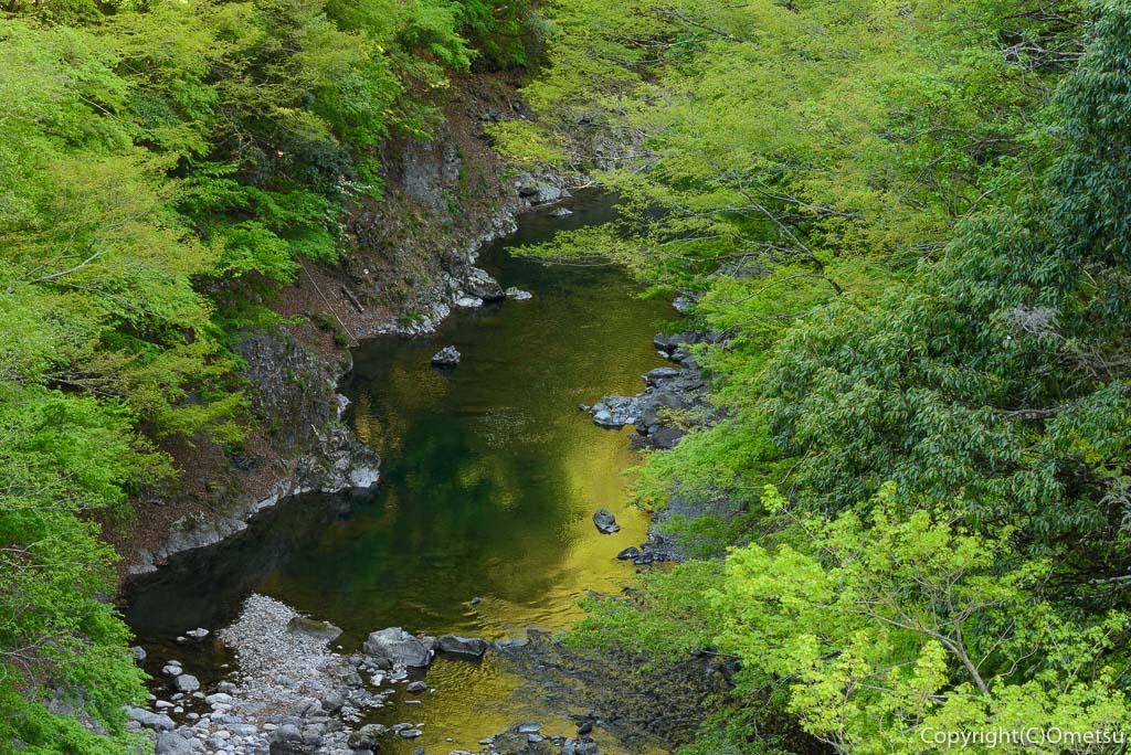 奥多摩町・多摩川の新緑の渓谷美
