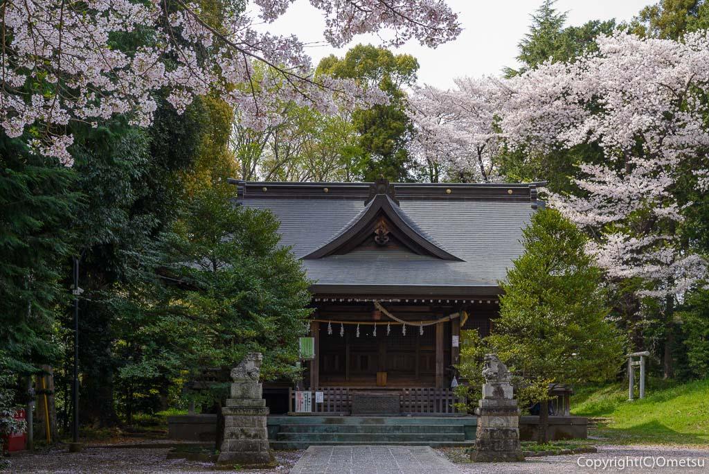 あきる野市・二宮神社