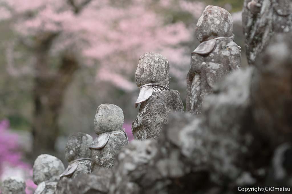 あきる野市・乙津の、龍珠院の地蔵と桜