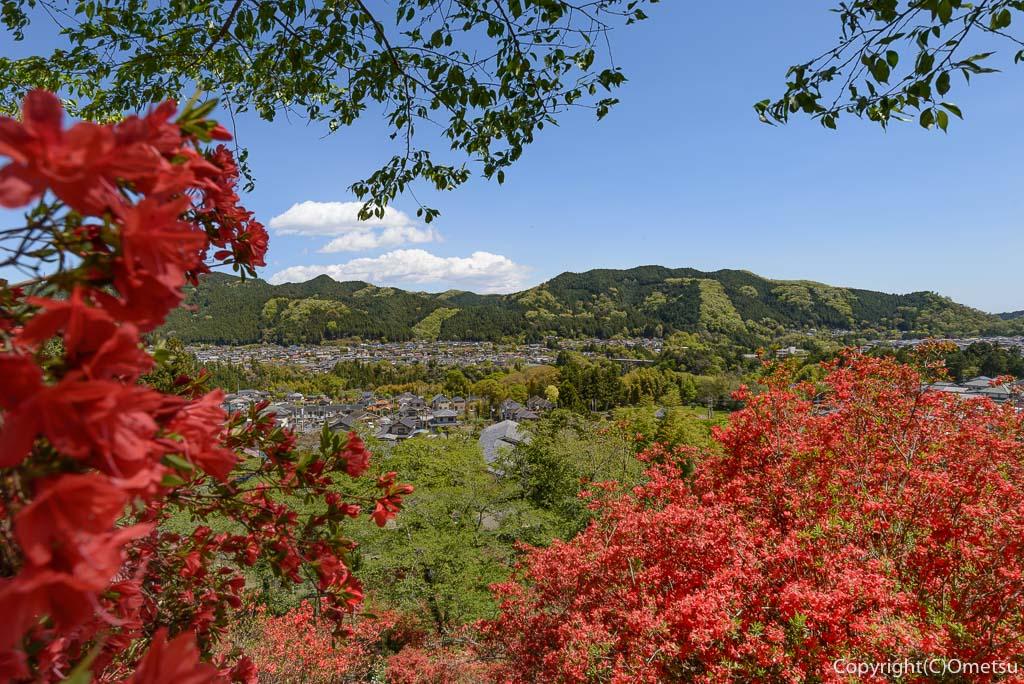 青梅市・奥多摩橋からの、多摩川と山