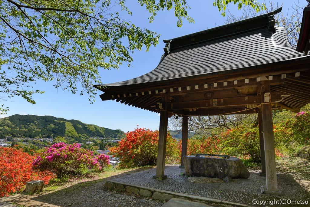 青梅市・愛宕神社の手水舎とツツジ