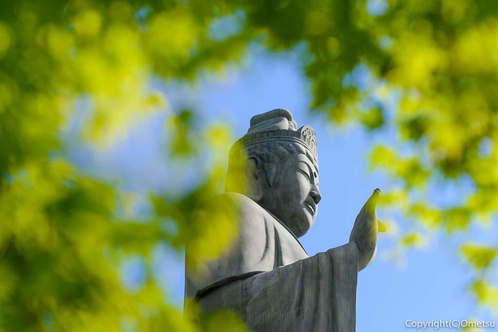 青梅・塩船観音寺の新緑と塩船平和観音立像
