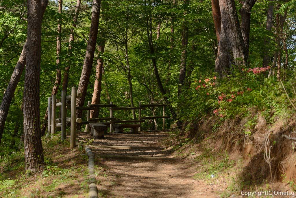 青梅市・霞丘陵ハイキングコースの新緑とツツジ
