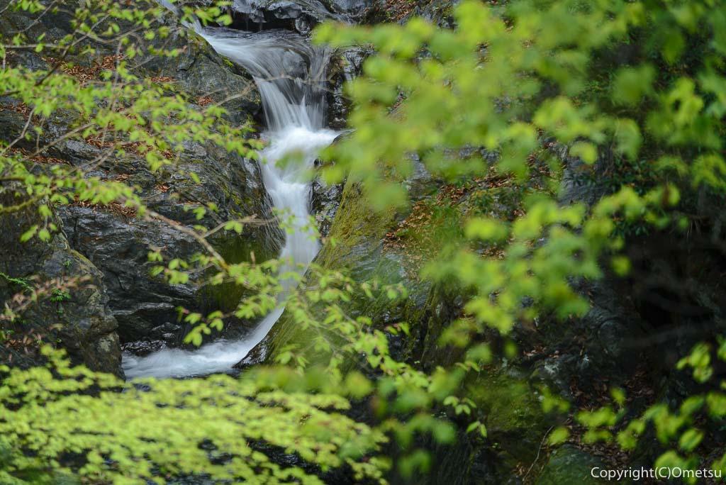 奥多摩町・川苔山の登山道の滝
