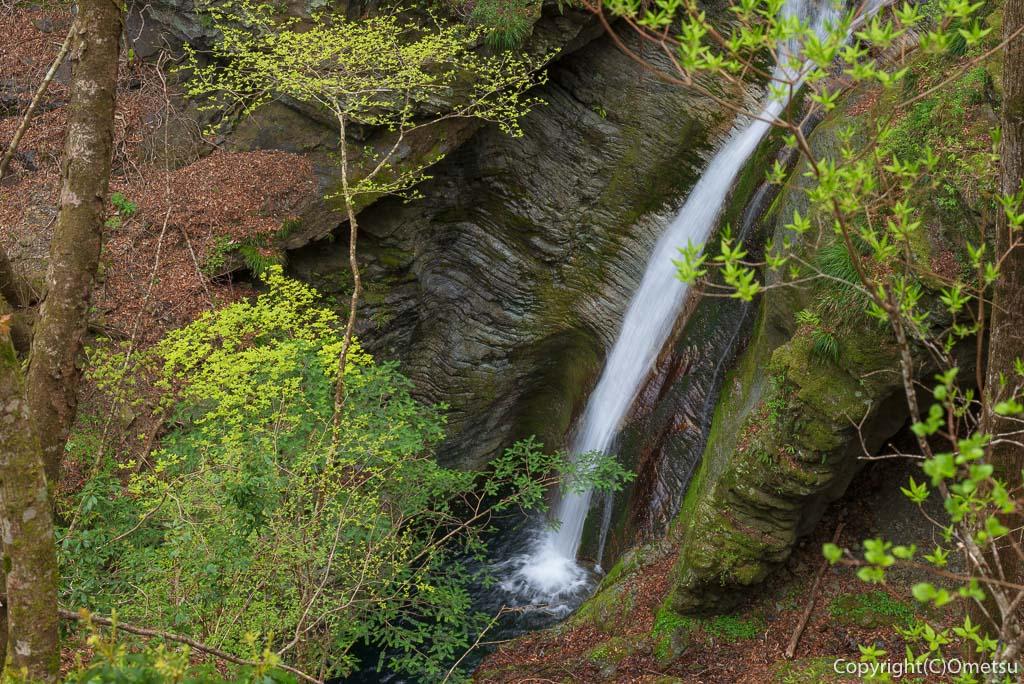 奥多摩町・川苔山の滝