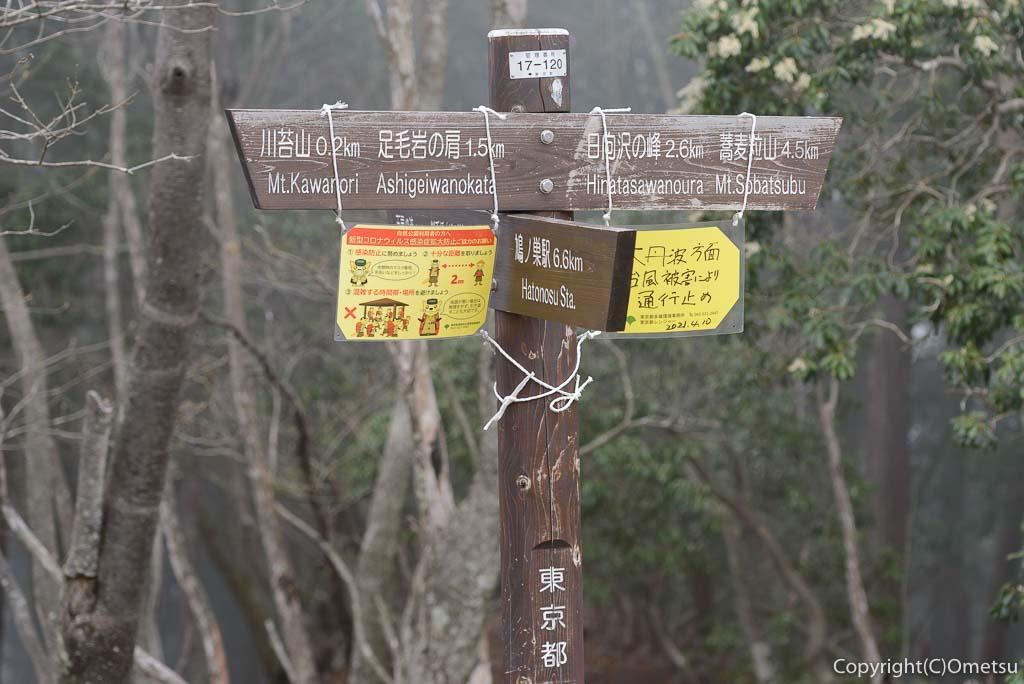 奥多摩町・川苔山の山頂付近の道標