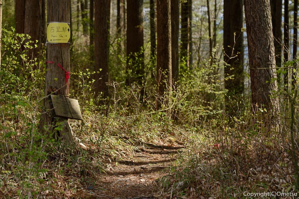 奥多摩町・川苔山・赤抗尾根の林道から古里駅への分岐の道標