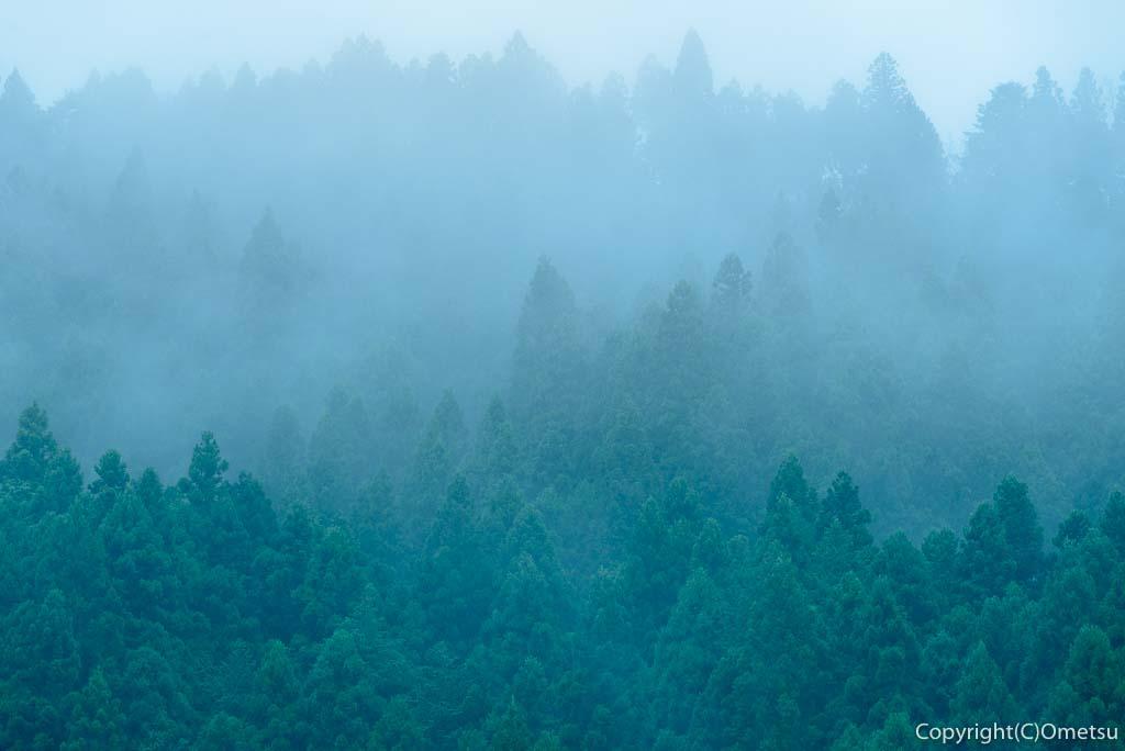 奥多摩の朝霧の山