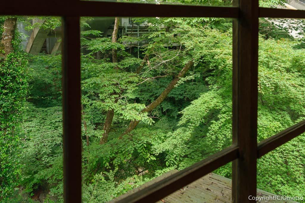 奥多摩町・氷川の、古民家・きよかわゲストハウスから、渓流の眺め