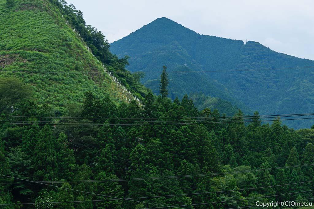 奥多摩町・古里駅近くの「山のぱ〜ん屋 森のダンス」のテラスの山並み